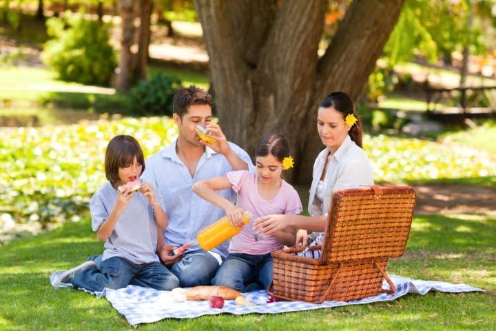 Hasil gambar untuk piknik keluarga